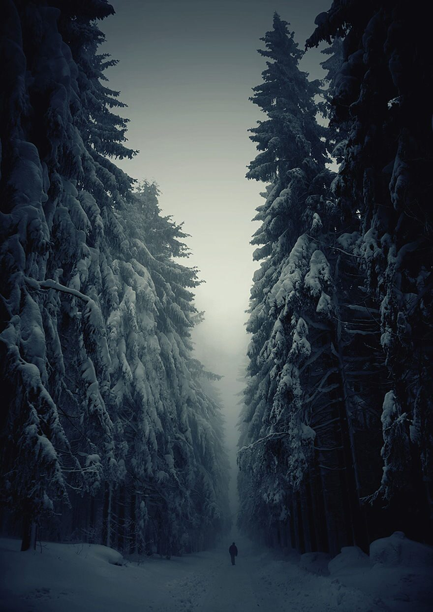 winter-landscapes-1