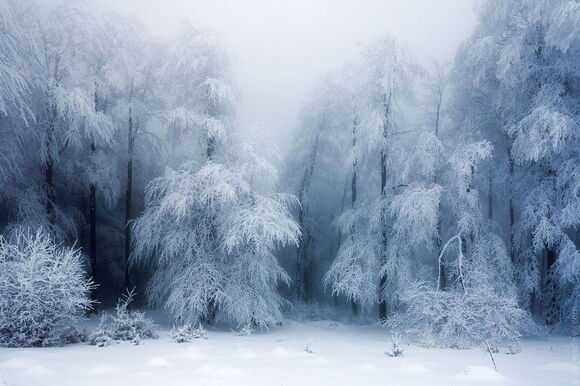 winter-landscapes-20