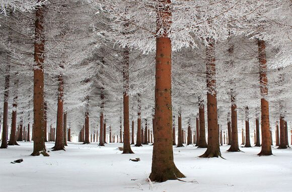 winter-landscapes-9
